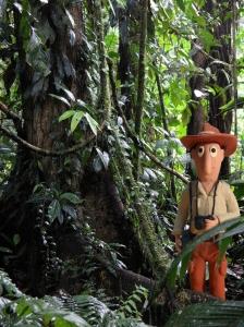 El profesor McManus en la Estación Biológica La Selva (Heredia,Costa Rica). (Fuente original: galería fotográfica de Lon&Queta (http://www.flickr.com/photos/lonqueta/with/4112791550/))